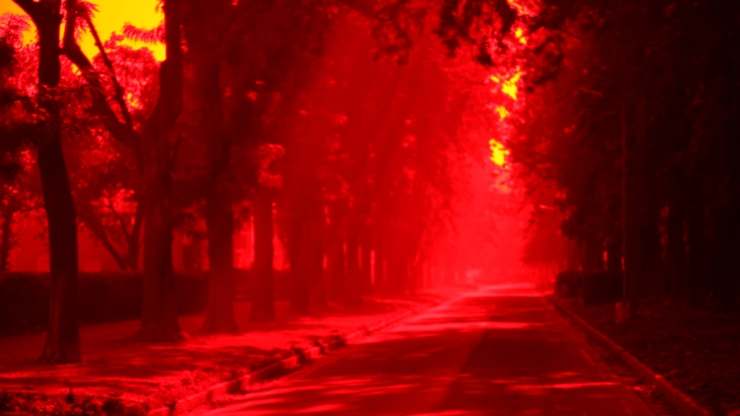 red lanscape 2